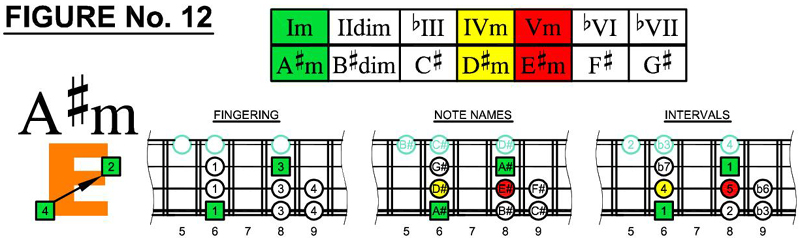 A#m box shapes and scale chords