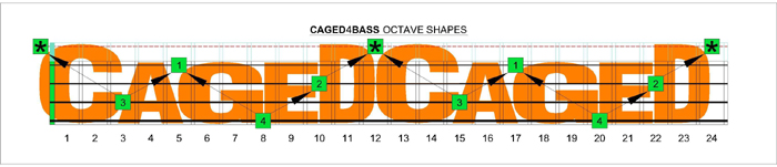 CAGED4BASS fingerboard