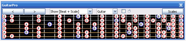 GuitarPro6 fingerboard