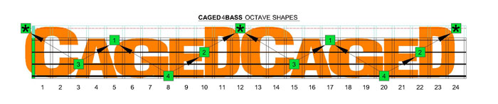 CAGED4BASS C nautral octave shapes