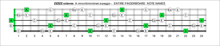 ZZZZZ octaves A minor-diminished arpeggio notes