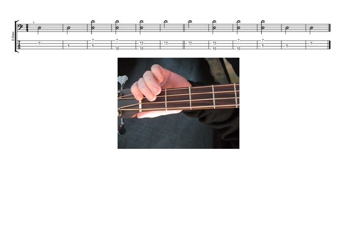 DCAGE4BASS D natural octave shapes TAB pdf