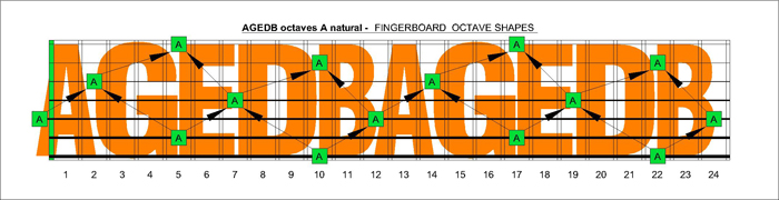 AGEDB octaves A natural fingerboard