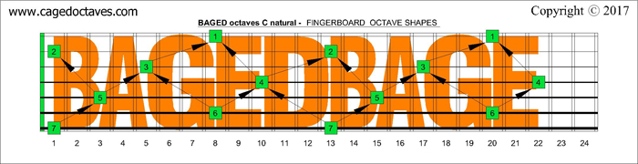 BAGED octaves: C natural fretboard