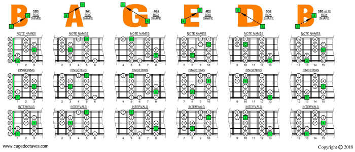 BAGED octaves C major scale box shapes