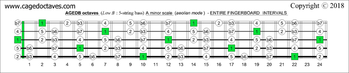 AGEDB octaves fingerboard A minor scale note intervals