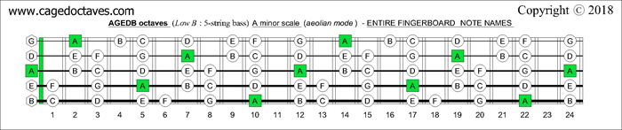 AGEDB octaves fingerboard A minor scale note names