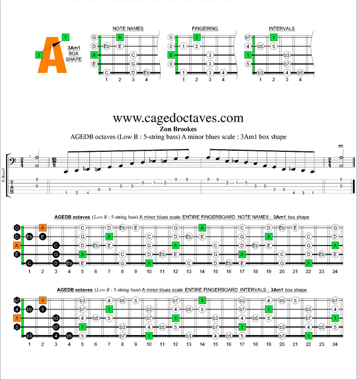 AGEDB octaves A minor blues scale : 3Am1 box shape