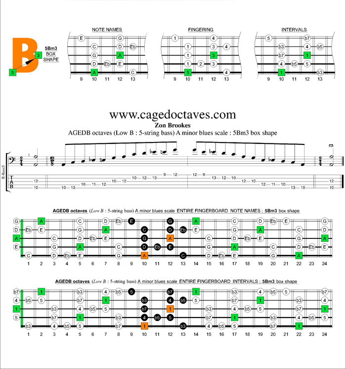 AGEDB octaves A minor blues scale : 5Bm3 box shape