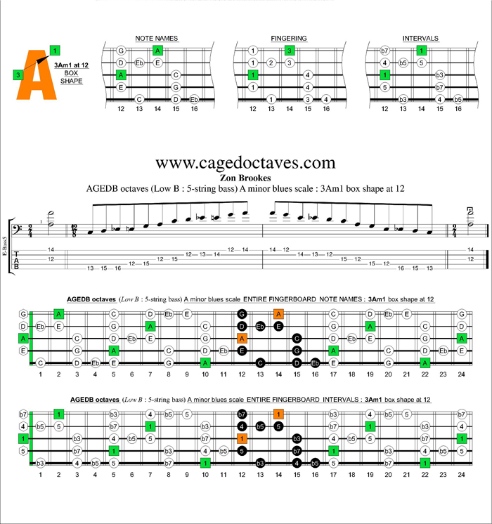 AGEDB octaves A minor blues scale : 3Am1 box shape at 12