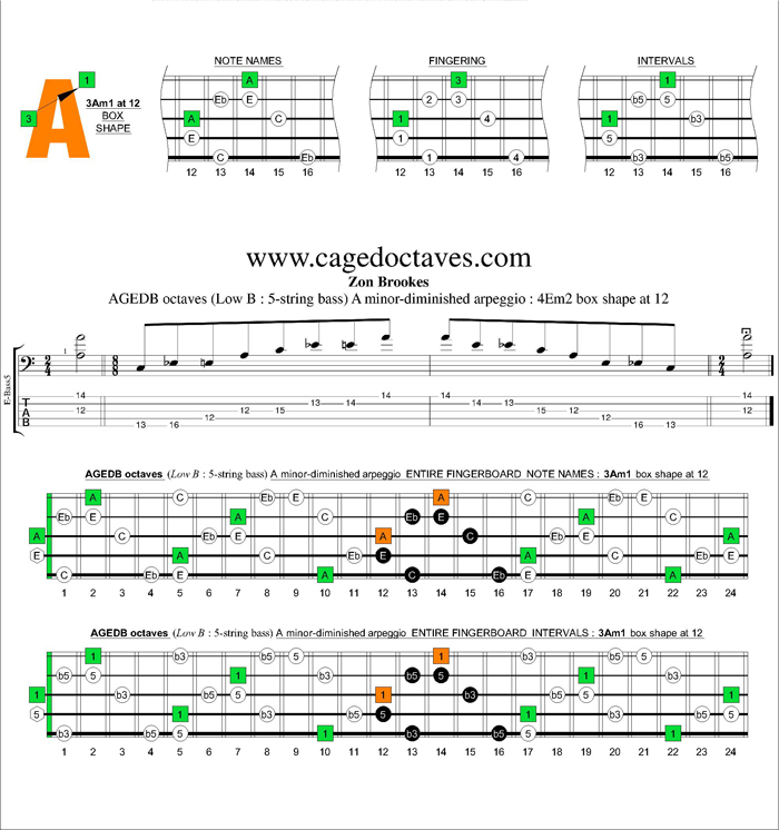 AGEDB octaves A minor-diminished arpeggio : 3Am1 box shape at 12
