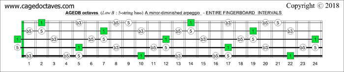 AGEDB octaves fingerboard A minor-diminished arpeggio note intervals