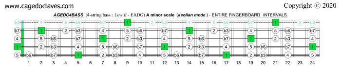 A minor scale (aeolian mode) : AGEDC4BASS fingerboard intervals