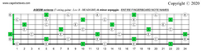 AGEDB octaves (7-string guitar): A minor arpeggio entire fretboard notes