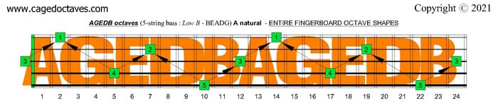 AGEDB octaves fingerboard : A natural octaves